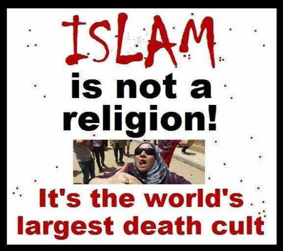 Basis dingen over islam